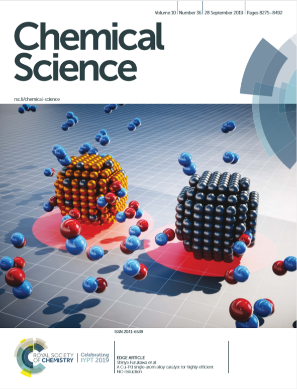 2019 chem sci wang cover