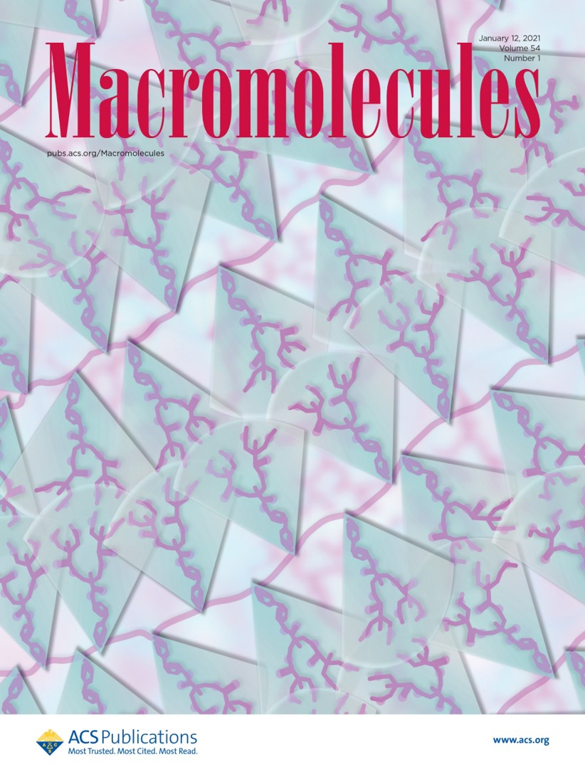 2021 Wang macromolecules cover